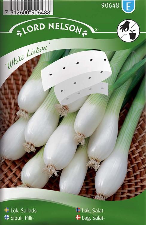 Lök, Sallads-, White Lisbon, Såband