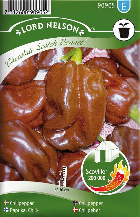 Chilipeppar,  Chocolate Scotch Bonnet