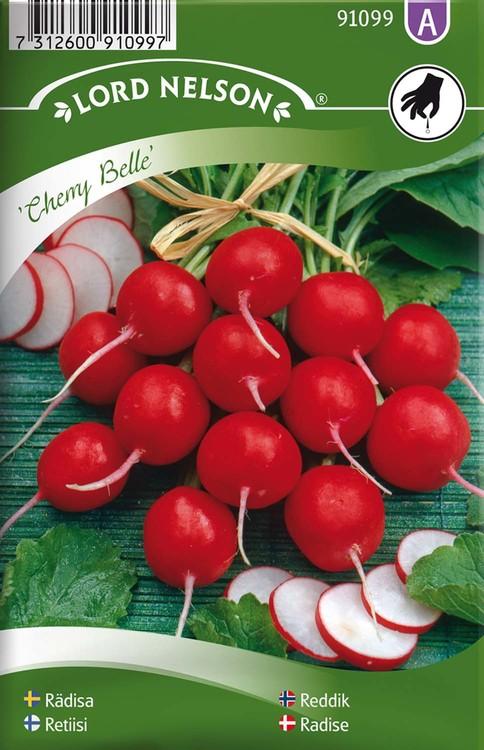 Rädisa, Cherry Belle, rund