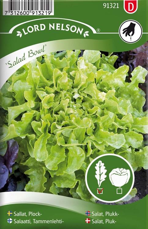 Sallat, Plock-, Salad Bowl, grön