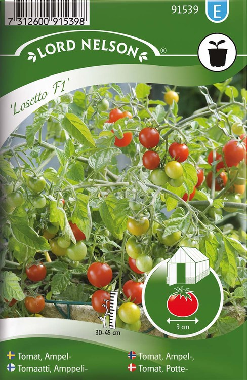 Tomat, Ampel-, Losetto F1