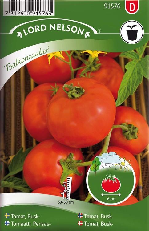 Tomat, Busk-, Balkonzauber