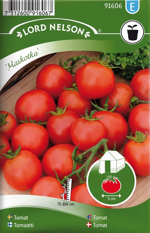 Tomat, Busk-, Maskotka