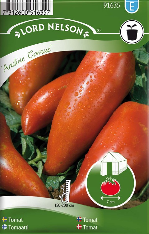 Tomat, Hög, Andine Cornue
