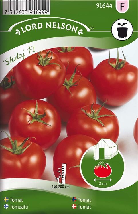 Tomat, Hög, Shirley F1, hög