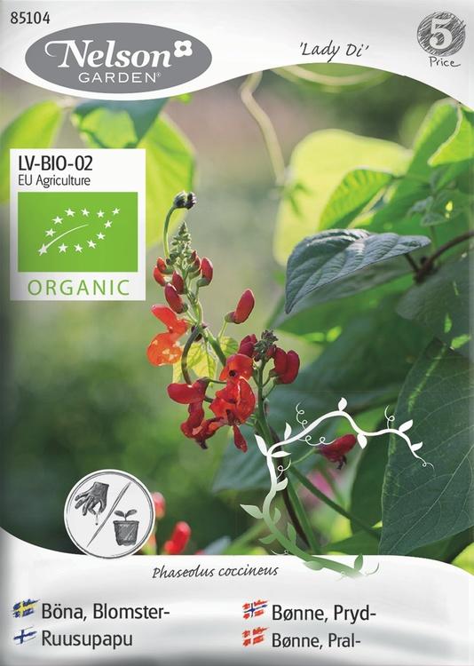 Böna, Blomster-, Lady Di, Organic