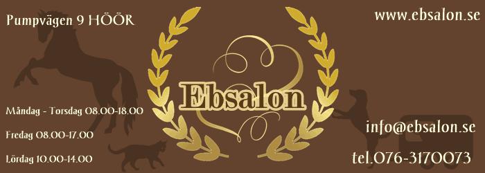 Ebsalon