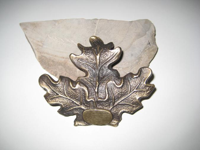 Bronslöv