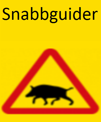Snabbguider