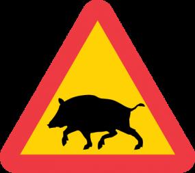 Skånejakt