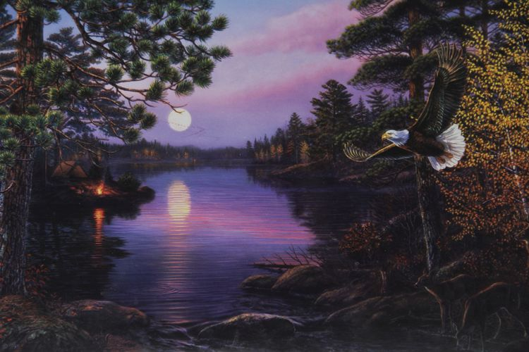 Pussel 1000 bitar Northern Twilight - James A. Mayer, 19x30 tum / 48x76cm