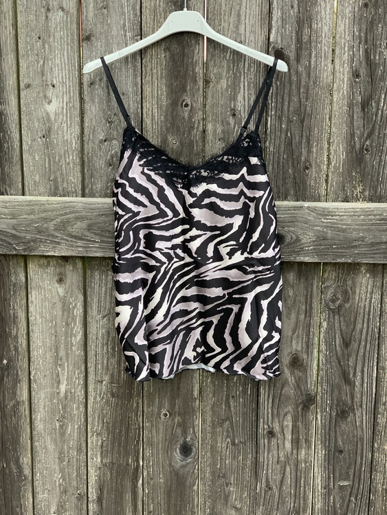 Zebra Linne