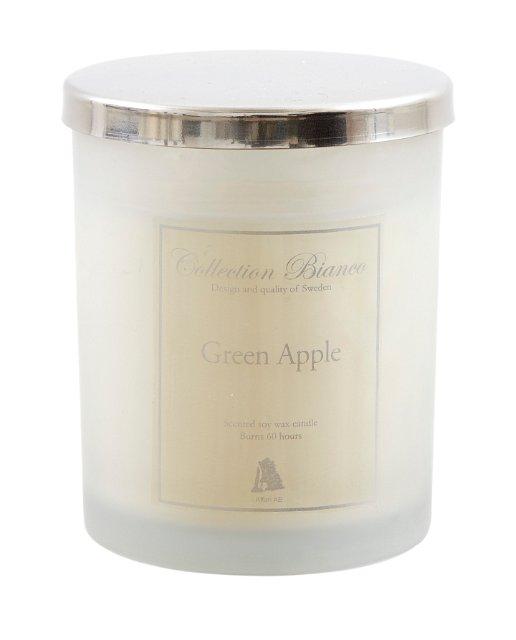 COLLECTION BIANCO - Grönt Äpple