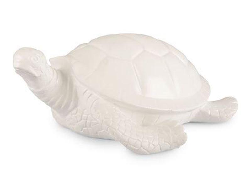 Sköldpadda Stor