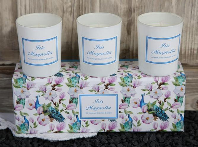 Doftljus Iris & Magnolia x3
