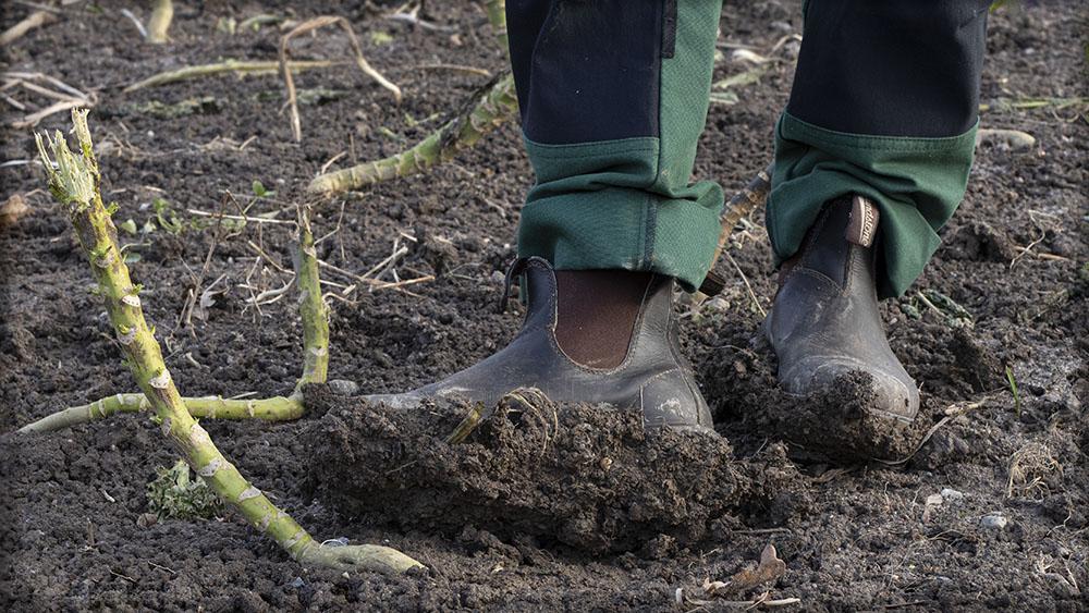 Kvinna med leriga arbetsskor på en lerig åker.