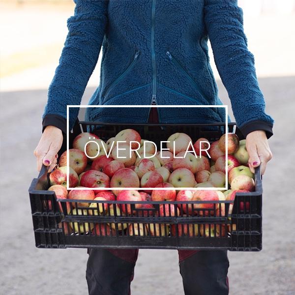 En kvinna iklädd fiberpälsjacka står med en låda med äpplen.