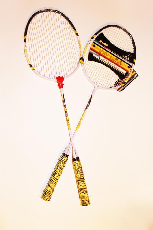 Par Badminton Racket Ny Reflex 577