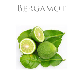 BERGAMOT ESSENTIAL OIL / ETERISK OLJA