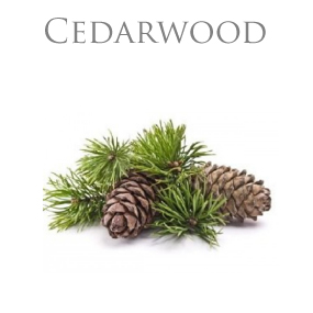 CEDARWOOD PURE ESSENTIAL OIL / EKOLOGISK ETERISK OLJA