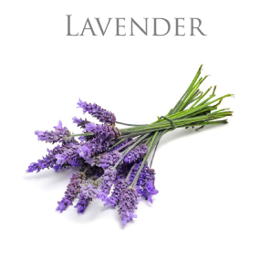LAVENDER PURE ESSENTIAL OIL / REN ETERISK OLJA