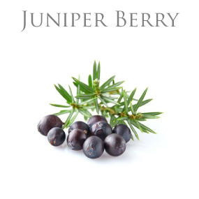 JUNIPER BERRY PURE ESSENTIAL OIL / EKOLOGISK ETERISK OLJA