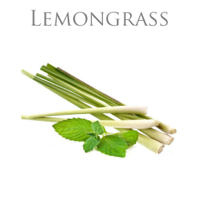LEMONGRASS PURE ESSENTIAL OIL / EKOLOGISK ETERISK OLJA