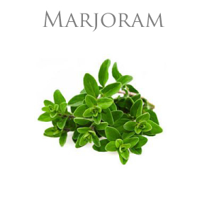 MARJORAM PURE ESSENTIAL OIL / REN ETERISK OLJA
