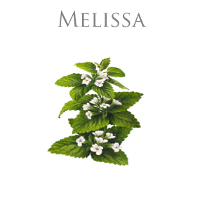 MELISSA ESSENTIAL OIL / ETERISK OLJA