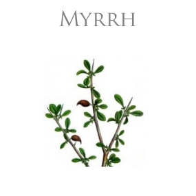 MYRRH PURE ESSENTIAL OIL / REN ETERISK OLJA