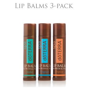 Lip Balm (läppbalsam) 3-pack