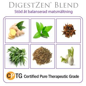 DigestZen®  Digestive Blend