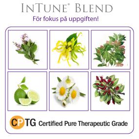 InTune®  Focus Blend