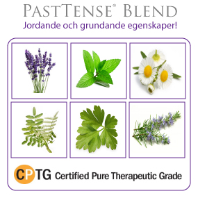 PastTense®  Tension Blend