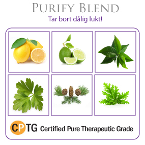 Purify  Cleansing Blend