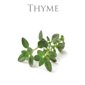 THYME ESSENTIAL OIL / ETERISK OLJA