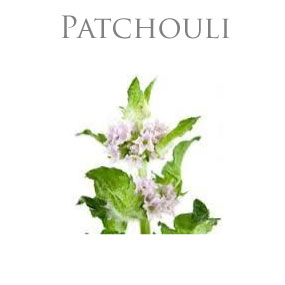 PATCHOULI PURE ESSENTIAL OIL / EKOLOGISK ETERISK OLJA