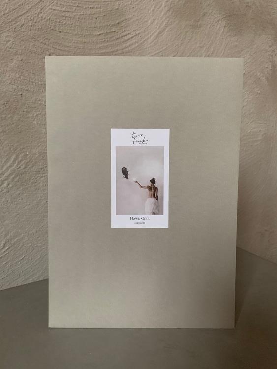 21x30 print  Hawk Girl
