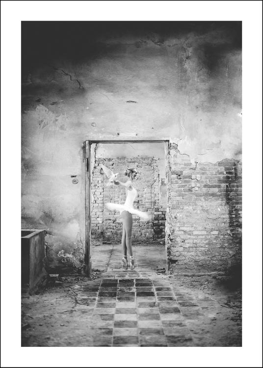Dante, art print 50x70 cm