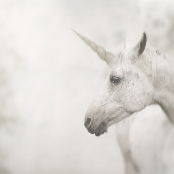"""Unicorn"" Dubbelt kort 15x15cm"