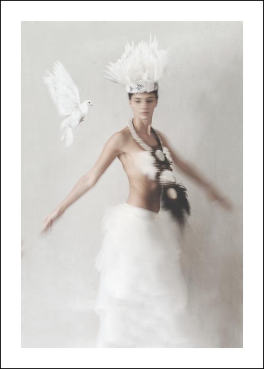 SHELLS & FEATHERS - Art print 50x70 cm