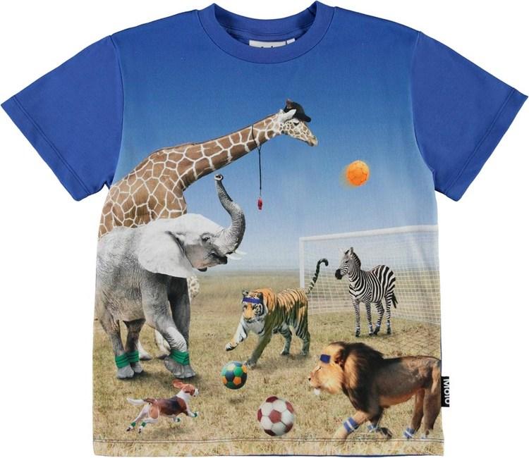 Molo Roxo Football Game