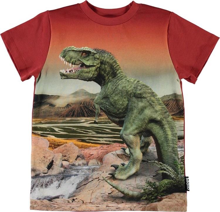 Molo Road Dinosaurs
