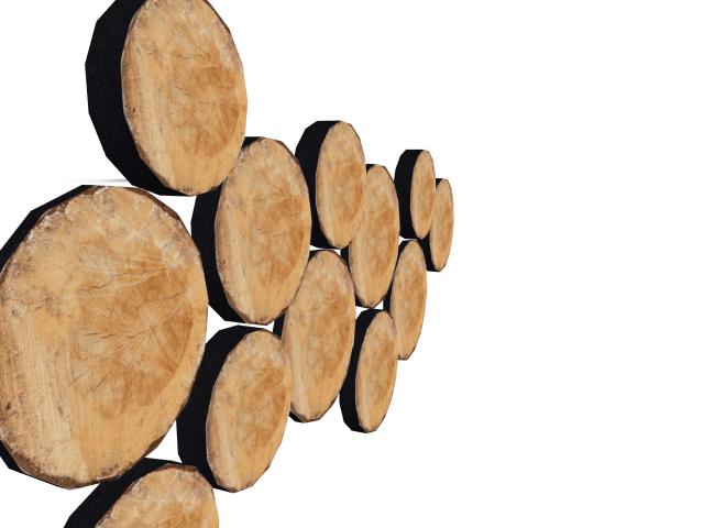 Ljudabsorbent till hem & kontor - Woodstock Ecosund väggabsorbent. Cirklarna tillverkas i det miljövänliga och ljudabsorberande materialet EcoSUND.