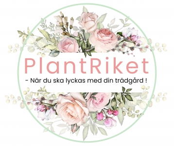 PlantRiket