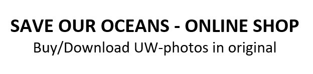 SAVE OUR OCEANS - UW-photos for sale/download