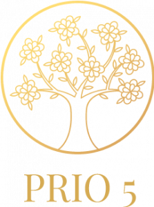 Prio5 Planner logo