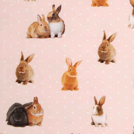 Kaniner, Aprikosrosa #486, ökotex