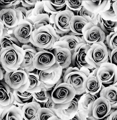 Roses, Grå #205, eko GOTS