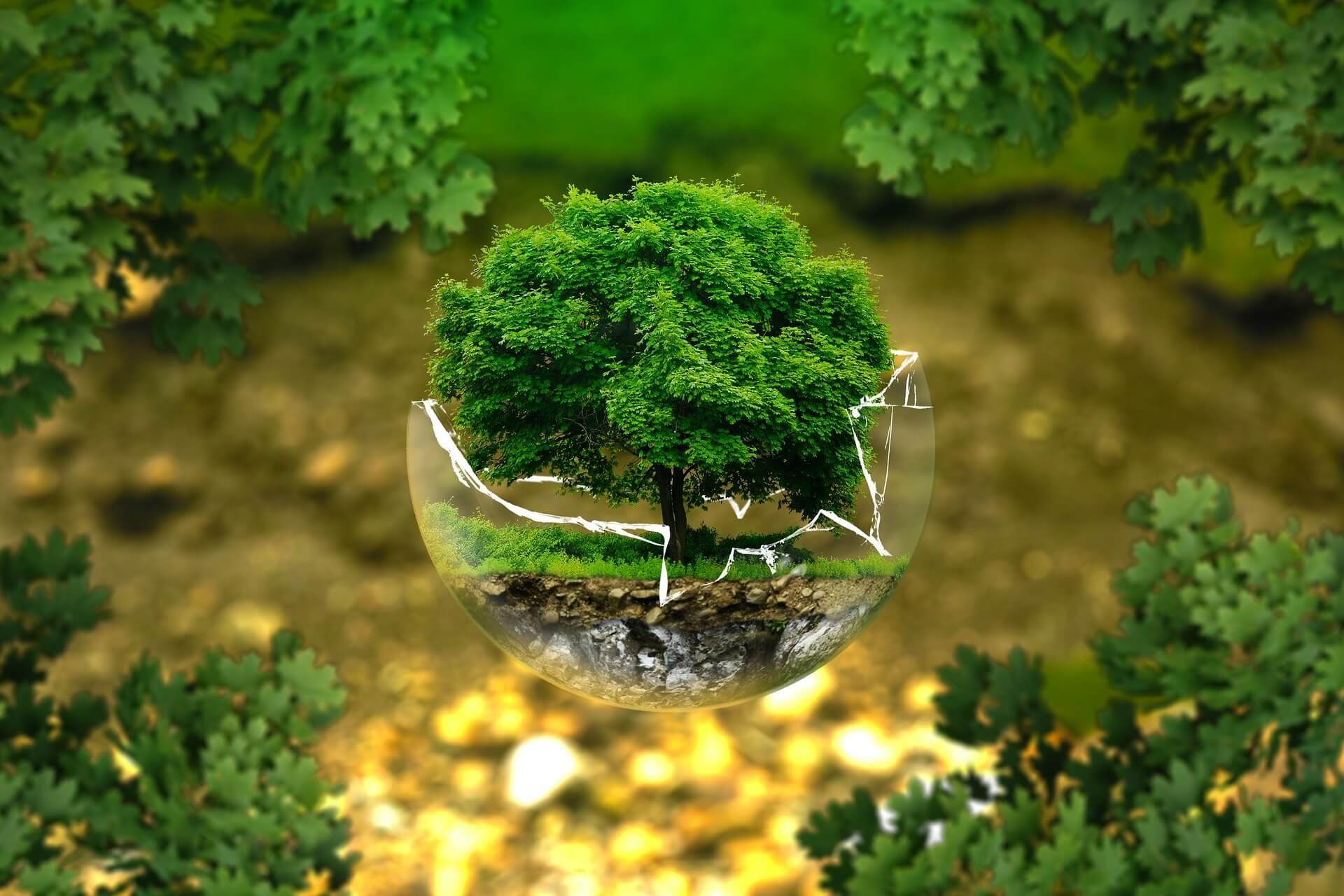Ekologiska och miljövänliga leksaker